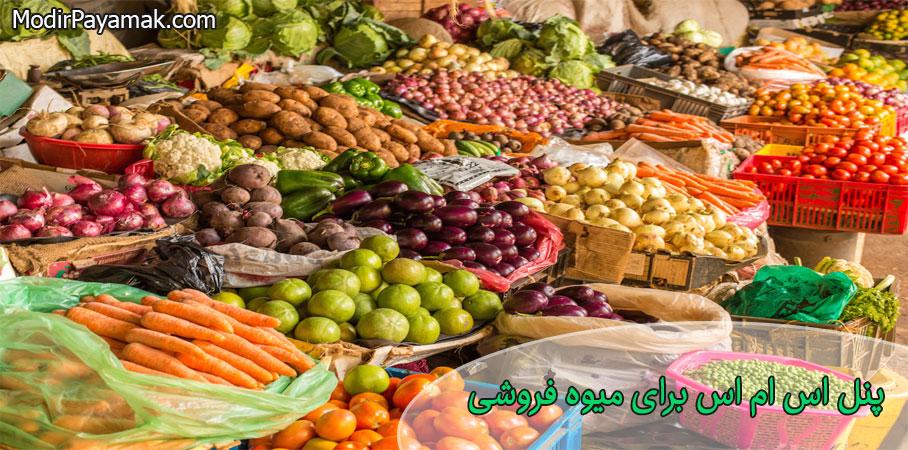 پنل اس ام اس برای میوه فروشی