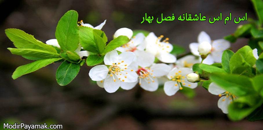 اس ام اس عاشقانه فصل بهار